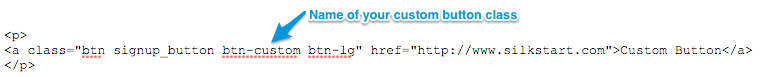 custom_button_HTML.png